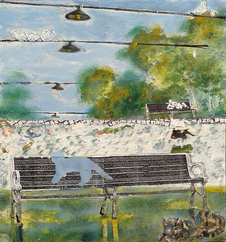 Branciforte Gatto di Steinberg sulla panchina
