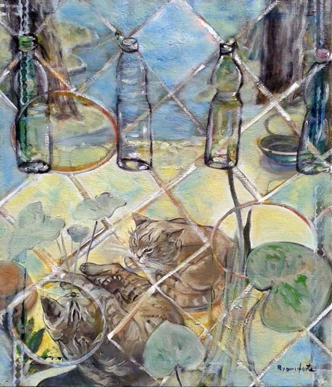 Branciforte - Bottiglie di plastica
